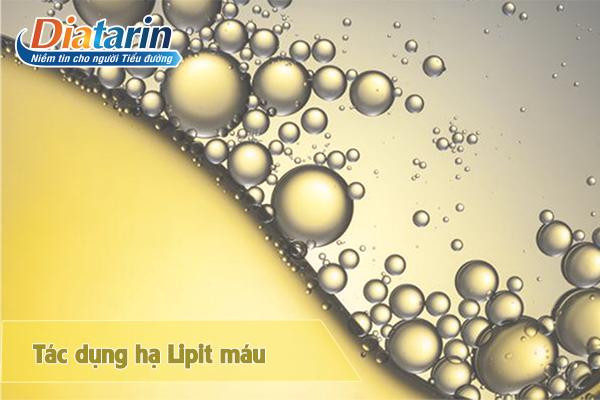 Nano berberin tác dụng hạ lipit trong máu